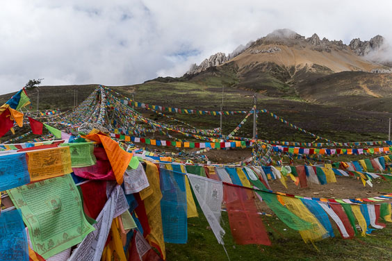 Tibetan Buddhist prayer flags at Baima Snow Mountain Pass 4,335m.