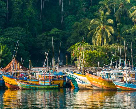 Fishing boats and their reflection in the water in Mirissa Harbor, Sri Lanka